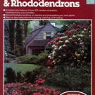 All About Azaleas, Camellias, & Rhododendrons