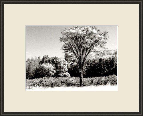 Framed 11x14 Art Photo Print Wall Decor Abstract new
