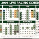 SUFFOLK DOWNS RACE TRACK 2008 LIVE RACING MAGNETIC SCHEDULE