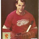 DETROIT RED WINGS GORDIE HOWE STEVE YZERMAN 1994 PINUP PHOTOS