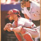 St Louis Cardinals Todd Zeile 1990 Pinup photo