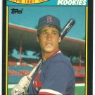 Boston Red Sox Tim Naehring 1991 Toys R Us Rookies Baseball Card # 22