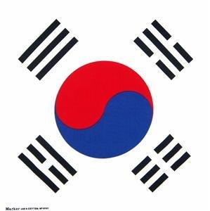 Flag of Korea Korean new bandana wall hanging 20x20