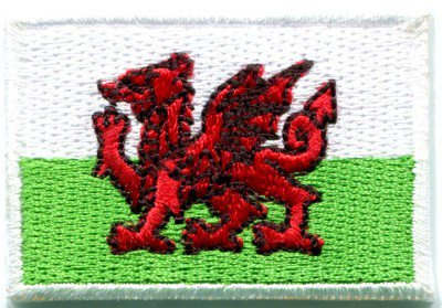 Flag of Wales Welsh red dragon celtic goth applique iron-on patch Medium S-383