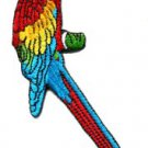 Parrot parakeet makaw toucan cockatoo polly bird applique iron-on patch S-207