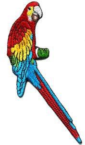 Parrot parakeet makaw toucan cockatoo polly bird applique iron-on patch S-207