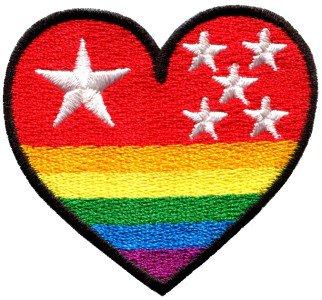 Gay lesbian pride heart rainbow flag LGBT retro applique iron-on patch S-139