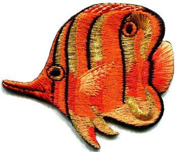 Angelfish fish orange applique iron-on patch S-222