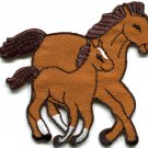 Horse colt bronco filly mustang pony stallion steed applique iron-on patch S-559