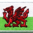 Flag of Wales Welsh red dragon celtic goth applique iron-on patch med. new S-383