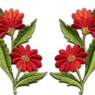Orange red daisies pair flowers floral bouquet boho applique iron-on patch S-725