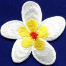 Plumeria flower dogbane boho retro sew sewing applique iron-on patch new S-516