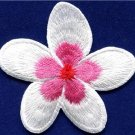 Plumeria flower dogbane boho retro sew sewing applique iron-on patch new S-695