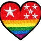 Gay lesbian pride heart rainbow flag LGBT retro applique iron-on patch new S-139