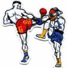 Muay Thai boxing fighters boxers martial arts applique iron-on patch new S-53