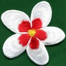 Plumeria flower dogbane boho retro sew sewing applique iron-on patch new S-846