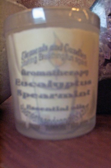 Eucalyptus Spearmint Candle