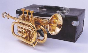 New Brass B flat Pocket Trumpet  w Case