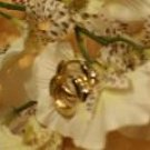 Small Cubic zirconia gold hoop earrings-46040