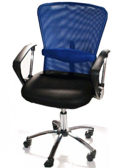 Blue Mesh Chair