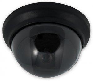"""1/4"""" Color Sharp CCD Dome Camera"""