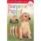 Surprise Puppy! Level 1 Pre- Grade 1 Eyewitness Readers Book