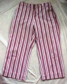 The Gap Brick Red Striped Denim Cotton Capri Pants - Size 6