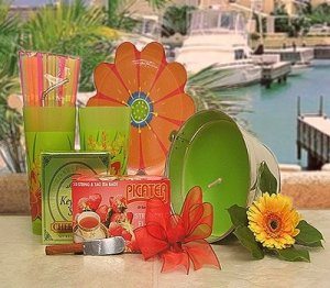 Colorful Summer Party giTf baske. NIB