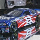 DALE EARNHARDT JR 2007 STARS & STRIPES COLORCHROME 1/24 ACTION RCCA ELITE NASCAR DIECAST