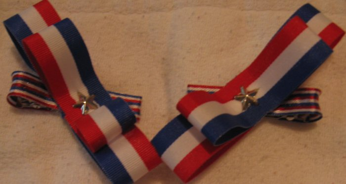 Red White and Blue Barrettes 2