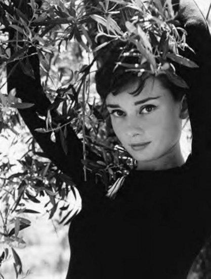Audrey Hepburn ~ 6