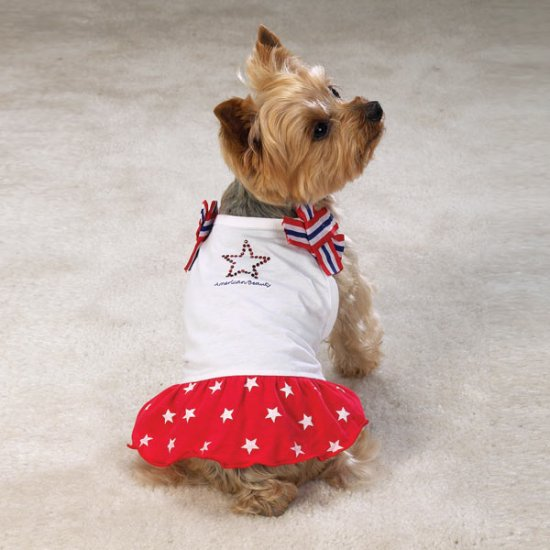 Casual Canine Patriotic Dresses  Sz Small