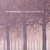 peter bruntnell - normal for bridgwater CD 1999 rykodisc slow river used mint