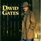 david gates - love is always seventeen CD 1994 discovery used