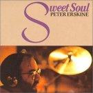peter erskine - sweet soul CD 1991 BMG victor 11 tracks used