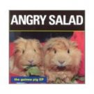 angry salad - guinea pig ep CD breaking world 7 tracks used mint