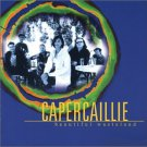 capercaillie - beautiful wasteland Cd 1998 survival rykodisc 12 tracks used mint