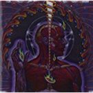 tool - lateralus CD used mint