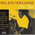 big joe williams - po' joe CD 1999 audio book & music 25 tracks used mint