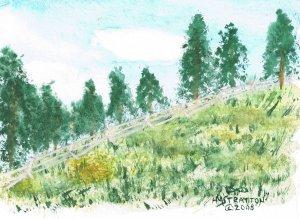 005 PRINT - Rail Fence Near Tie Hack Reservoir (Original not available)