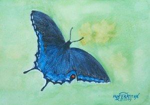 106 Black Swallowtail