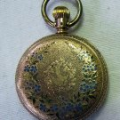 Antique 1884 ELGIN 14k Gold Ladies Hunting Case Pocket Watch Bird Blue Green Floral Inlaid Works