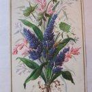 Rare c 1880s Antique Victorian Business Trade Birthday Card Frank E. Sargent Dry Goods Fall River MA