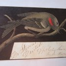 Rare c 1880s Victorian Handwritten Business Trade Card Dr. Stevens Dentist City Hall Fall River