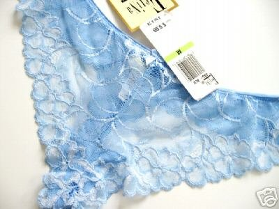 A0003 FELINA DESIRABLES BLUE SHEER EMBROIDERY MESH THONG SIZE MEDIUM