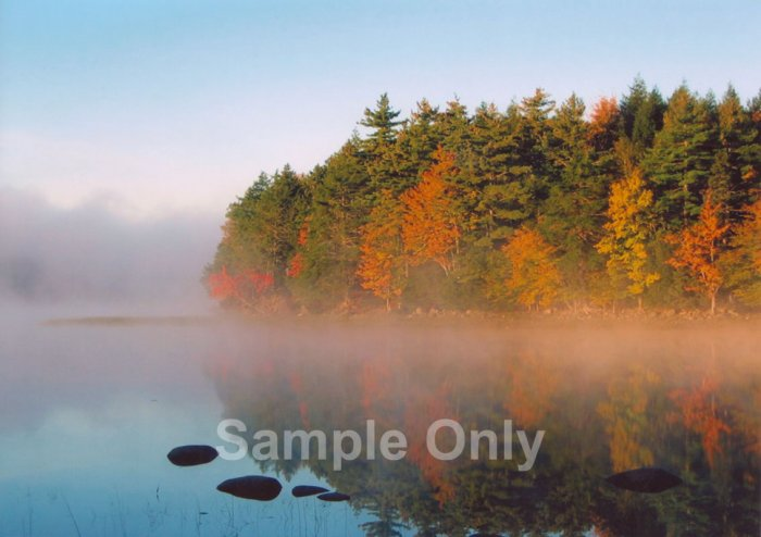 """Misty Point"" - 5x7 - Original Color Photo - signed"
