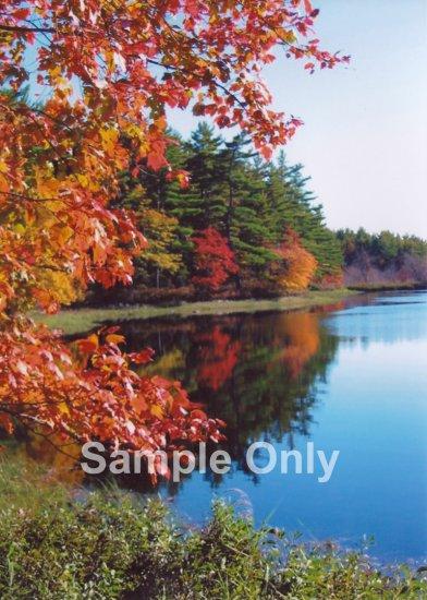 """Autumn Cove"" - 5x7 - Original Color Photo - signed"