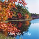 """Autumn Cove"" - 5x7 - Original Color Photo - signed"