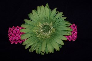 Lime Green Gabera Daisy Headband
