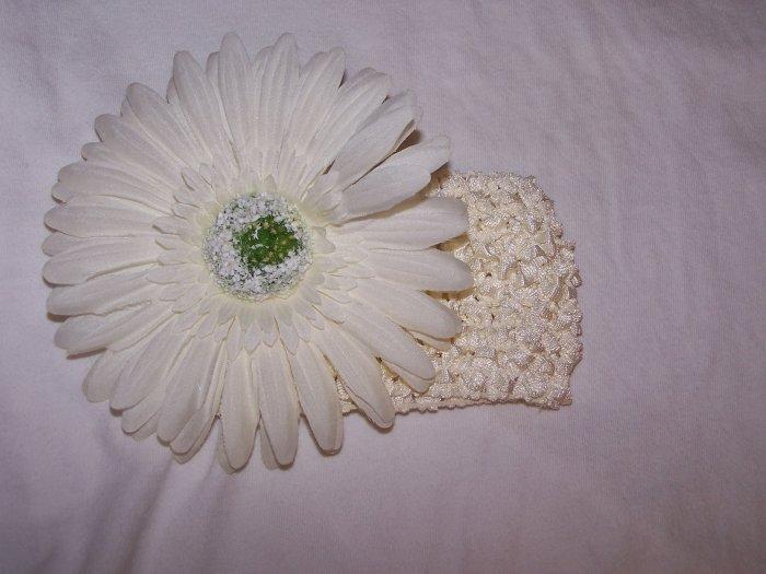 White on White Daisy